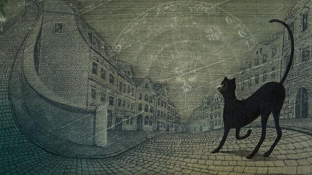 Sny o toulavých kočkách
