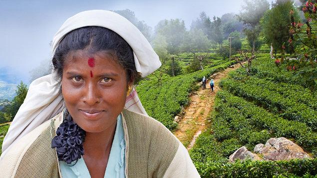 Srí Lanka - ostrov čaje a slonů cestovatelská diashow Martina Loewa