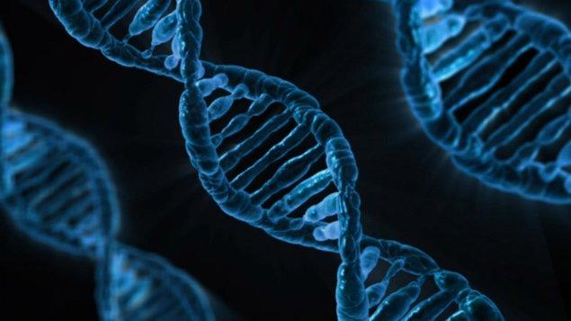 AFO52: Biologie 2.0: Jak se dělá Evoluce