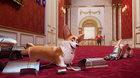Psí veličenstvo