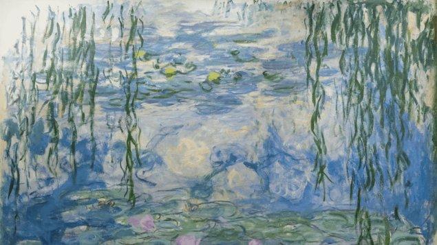 Monetovy lekníny – magie vody a světla