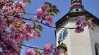 Komentovaná prohlídka věže kostela sv. Mikuláše