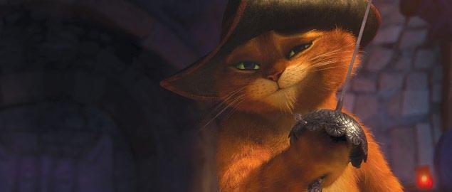 tesné právne mačička