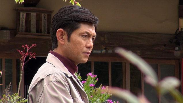 Eigasai: Věčné sakury