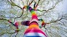 Guerilla_knitting* - Barevný podzim v Týně nad Vltavou