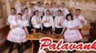 31. ročník Seriálu koncertů dechových hudeb - Palavanka