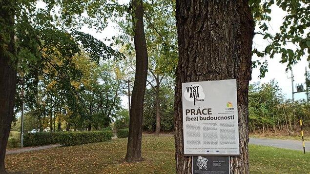 Výstava na stromech - PRÁCE (bez) budoucnosti
