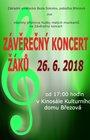 Závěrečný koncert žáků ZUŠ Březová