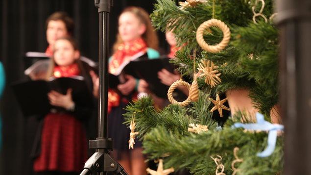 Vánoční Rosalky