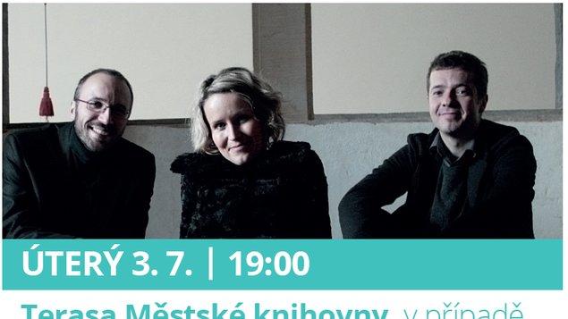 Divé husy Jitka Šuranská Trio