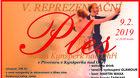 V. Reprezentační ples města
