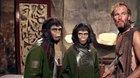 Planeta opic: PROJEKT 100