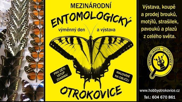 Entomologický výměnný den a výstava * ZRUŠENO