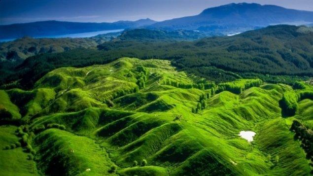 Cesta do hlubin Nového Zélandu