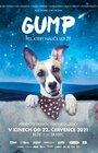 Gump – pes, který naučil lidi žít | BABY BIO